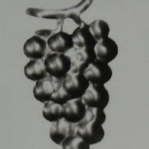 Виноградные гроздья Арт. 1028П